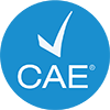CAE Design Excellence Award